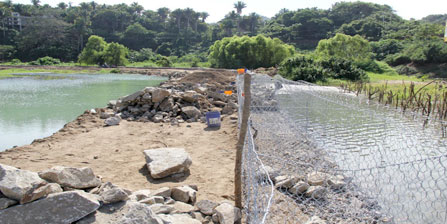 Damages to San Pancho wetlands